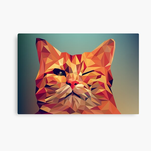 wink wink kitty cat Canvas Print