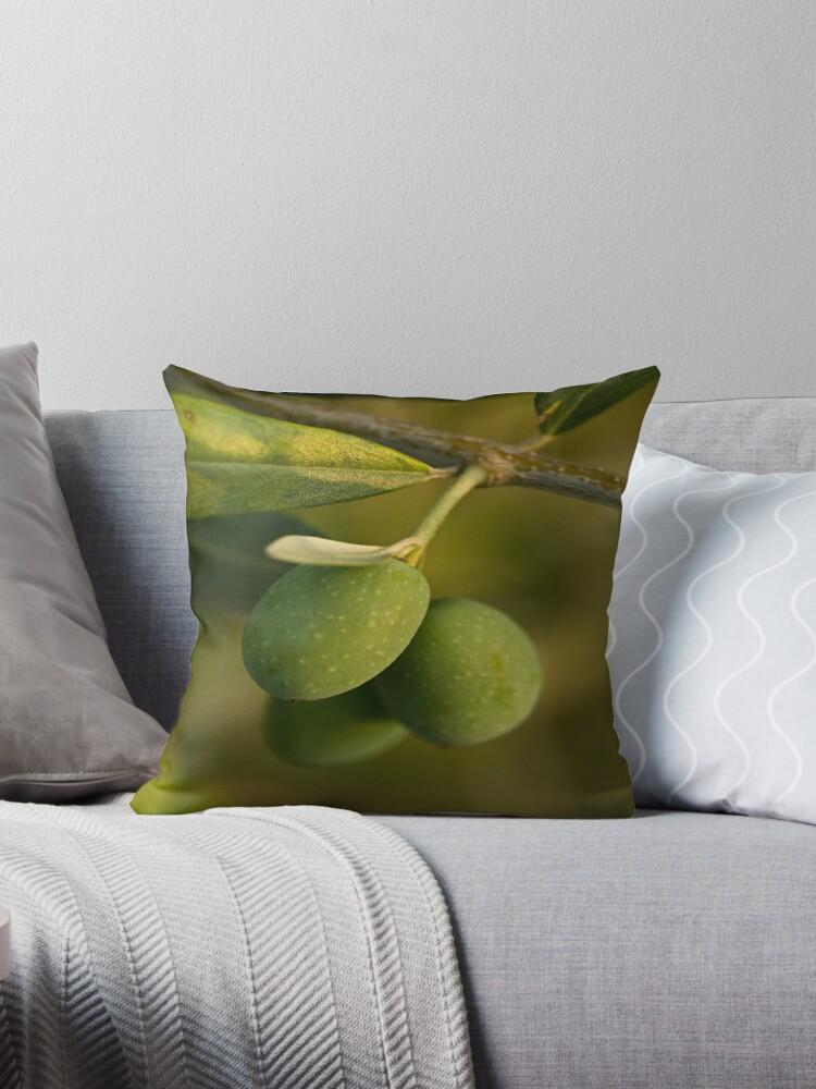 Three Olives by Ilva Beretta