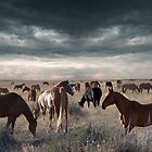 Horses Forever by Bill Stephens