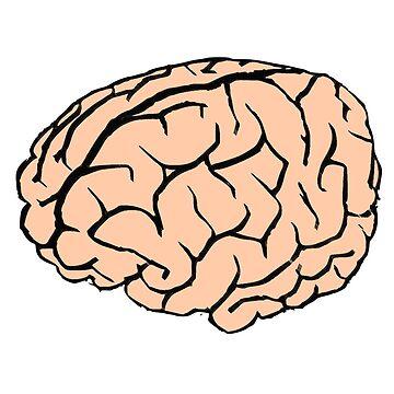 brain by thnatha