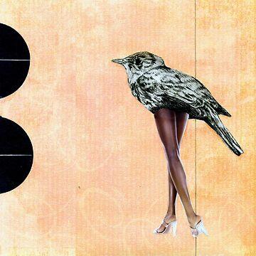 legs-legs-legs by claravox