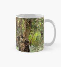 Paper Bark Wetlands  Mug