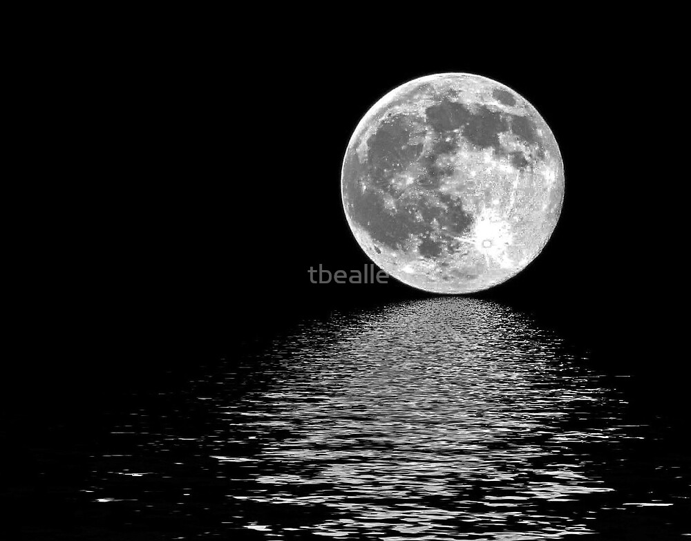 Moon~Shine by Terri~Lynn Bealle