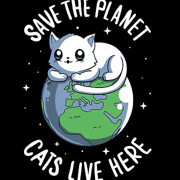 Cats live here by Typhoonic