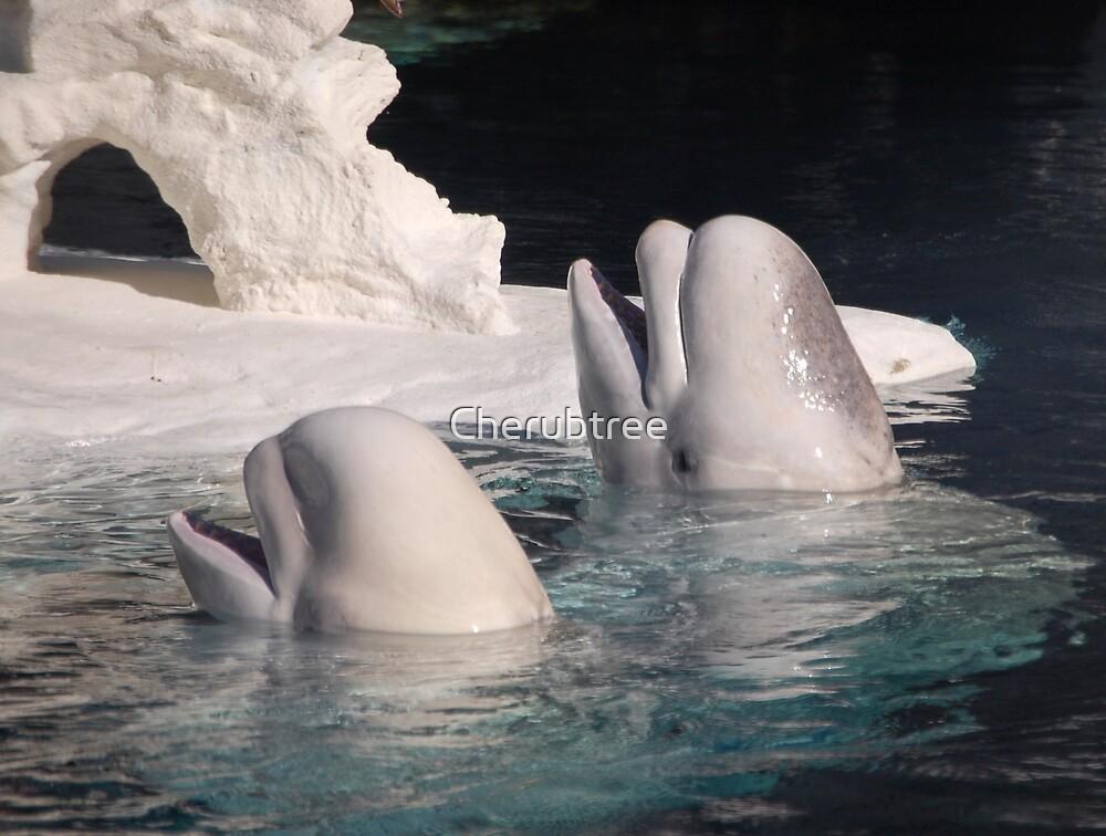 Beluga Angels: by Cherubtree