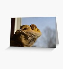 Bearded Dragon Thinking Greeting Card