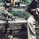 SQUIRRELS + MAN IN WASHINGTON SQUARE PARK, NYC, 2018 by Marc Zahakos