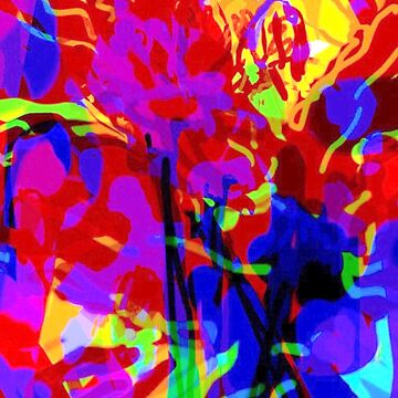 Abstract Irises  by Kater