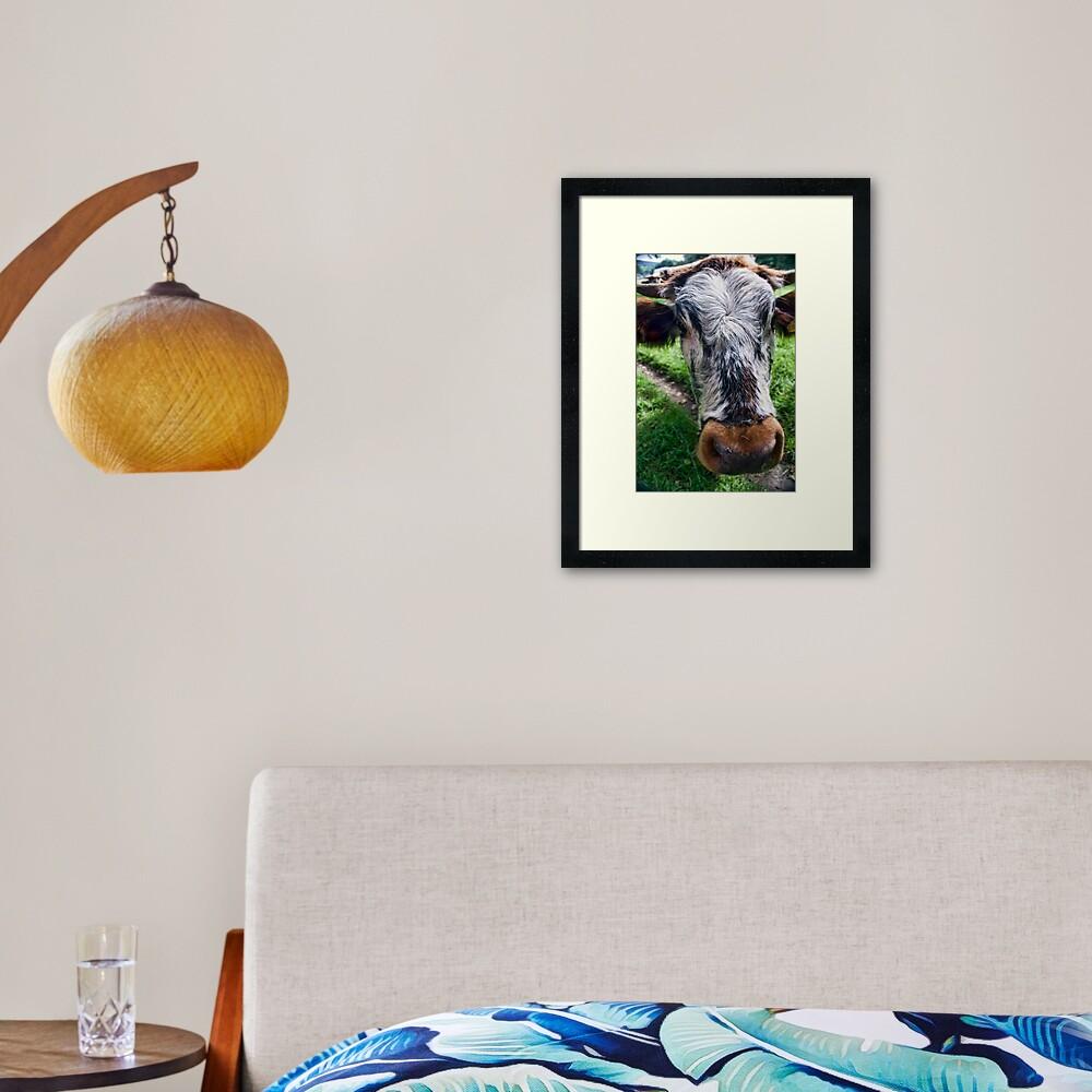 Nosey Cow Framed Art Print