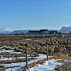 Iceland farmhouse by hanspeder
