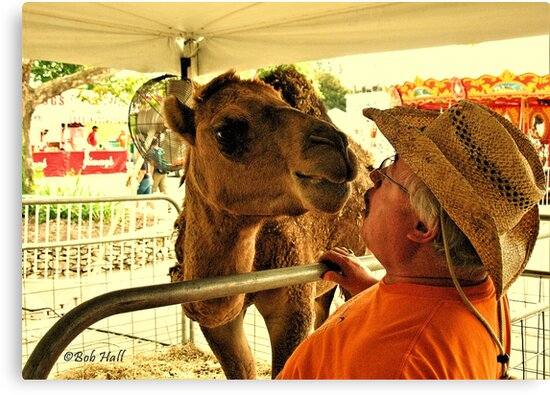 """""""Finally, Face to Face! This Tent isn't Big Enough for the Both of Us.""""... prints and products by Bob Hall©"""