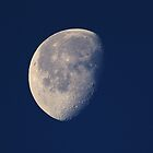 The Beautiful Moon by Laura Puglia