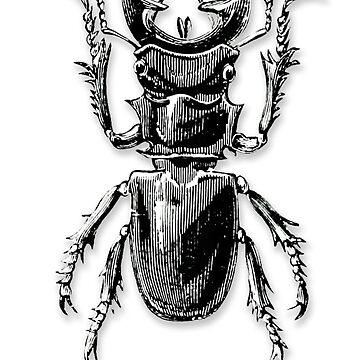 I woke up this way - Kafka beetle by kazwindness