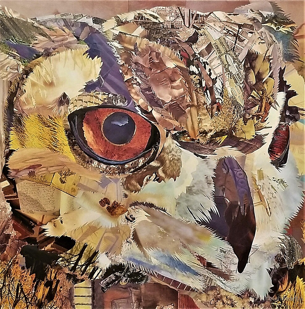 Great Horned Owl Collage Art - CE White Art by cewhiteart