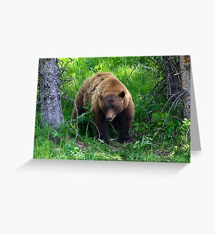 Under Suspicion Greeting Card