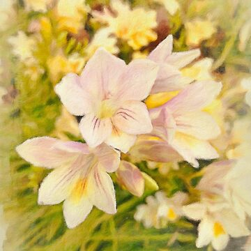 Early Springtime Freesias by Rasendyll