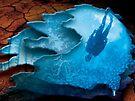 Aquatic Adventures by Alex Preiss