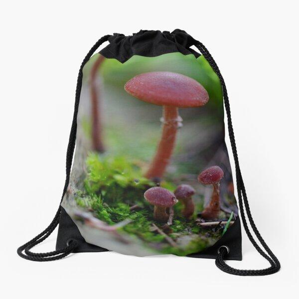 Sort in order of size Drawstring Bag