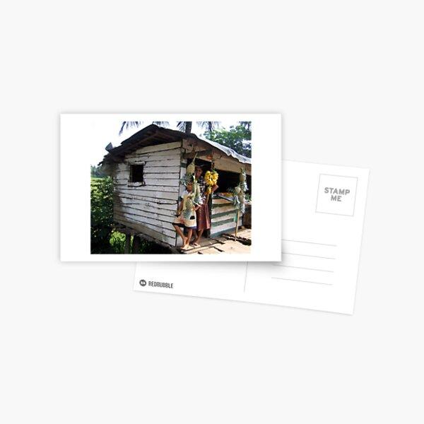 Pineapple shy Postcard