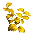 Make your life like a Golden leaf by hutofdesigns