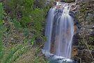 Upper  Rollasons Falls by mspfoto