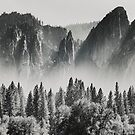 Yosemite Valley X by Pascal Deckarm