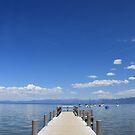 Tahoe   by BLAMB