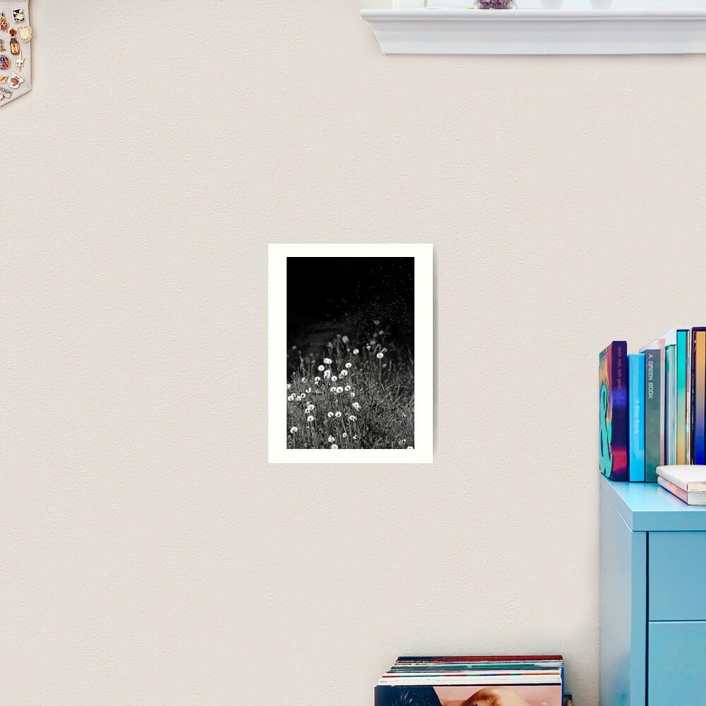 Dandelions in black&white Art Print