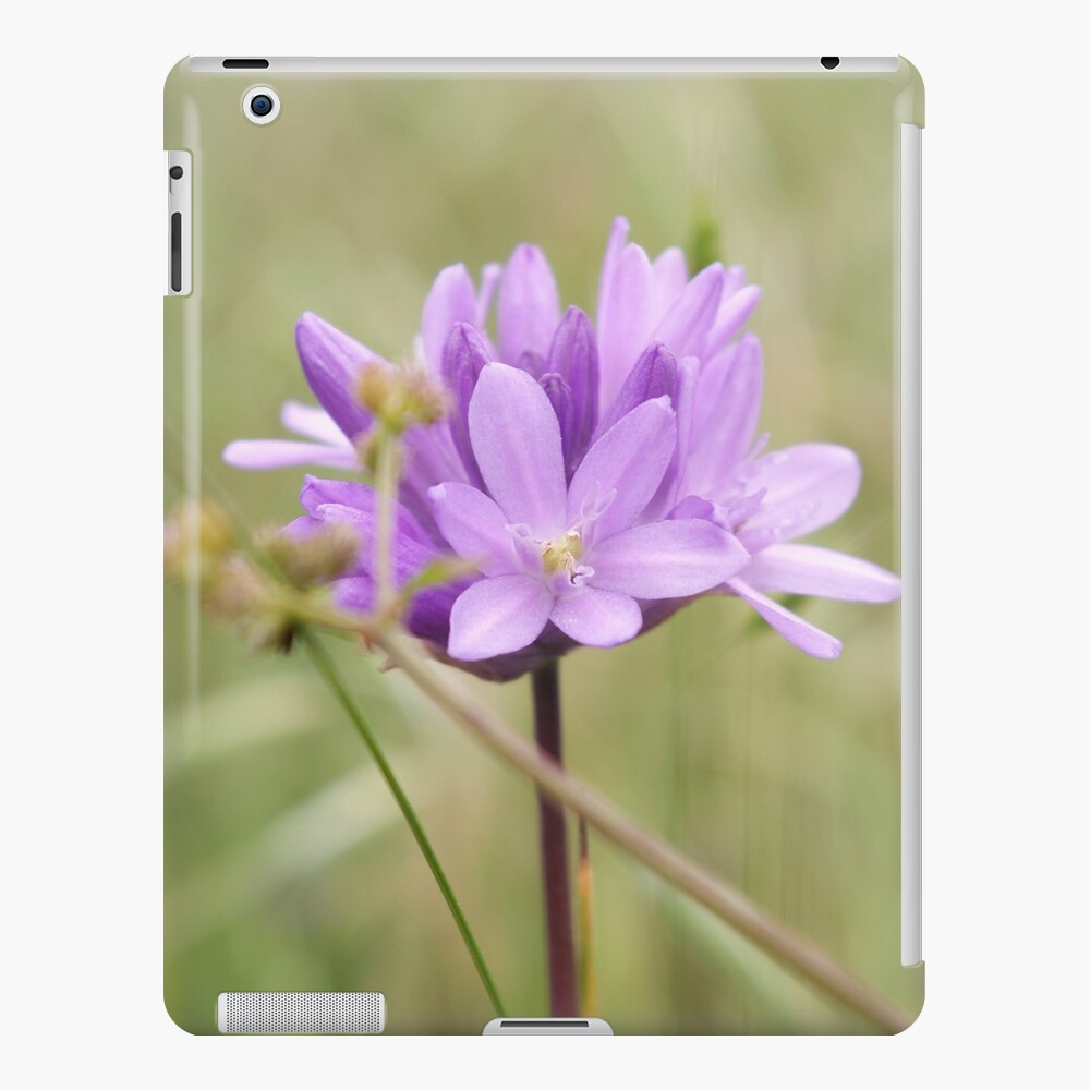 Blauer Schwanz iPad-Hülle & Skin