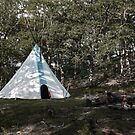 Camp  by Nature Flicks