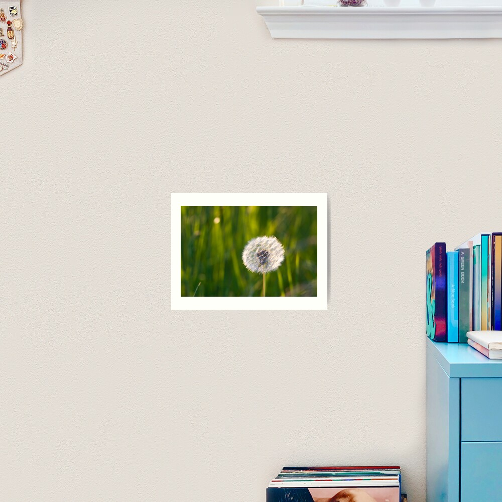 The lone dandelion Art Print