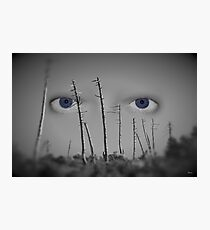 I see you... Photographic Print
