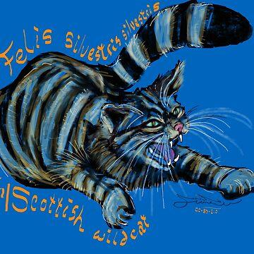 Wildcat, Felis silvestris silvestris by michdevilish