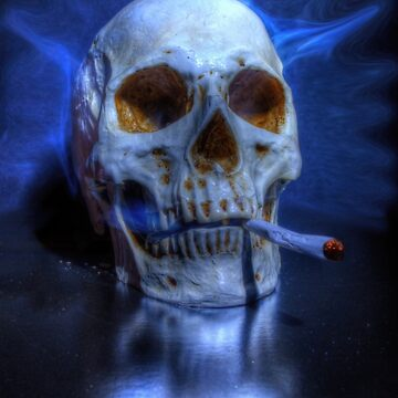 Smoking Skull by Nigdaw