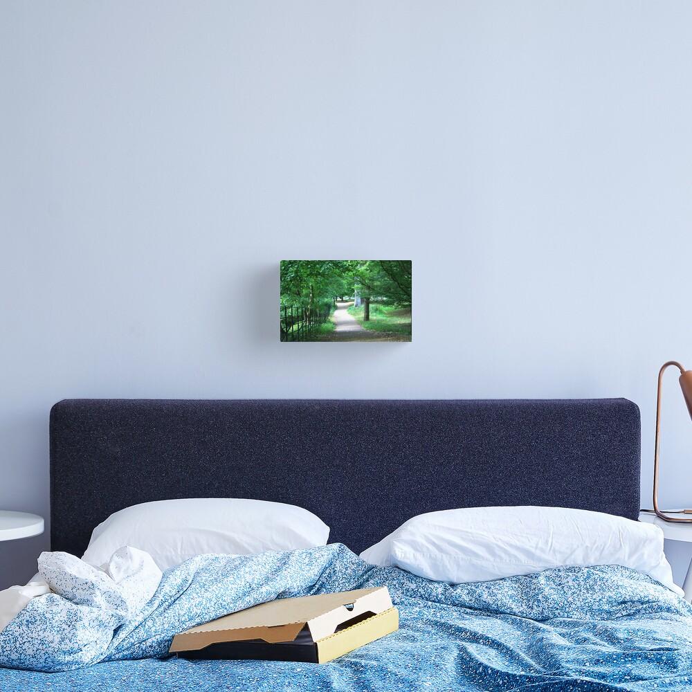 A Path Through The Green Canvas Print