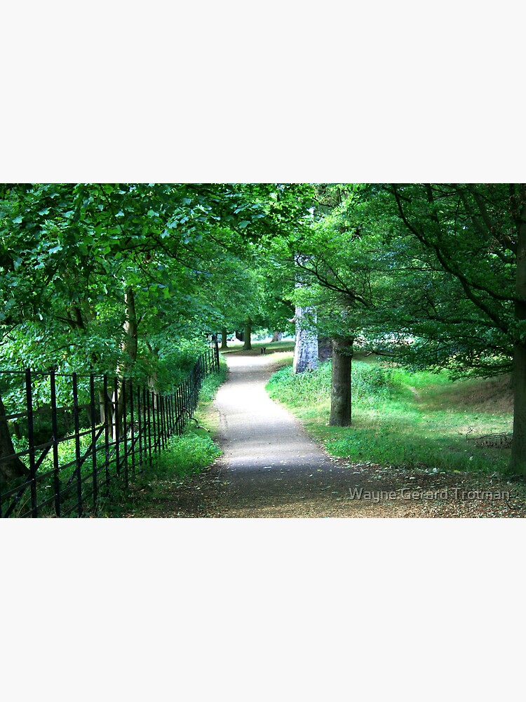A Path Through The Green by redmoondragon