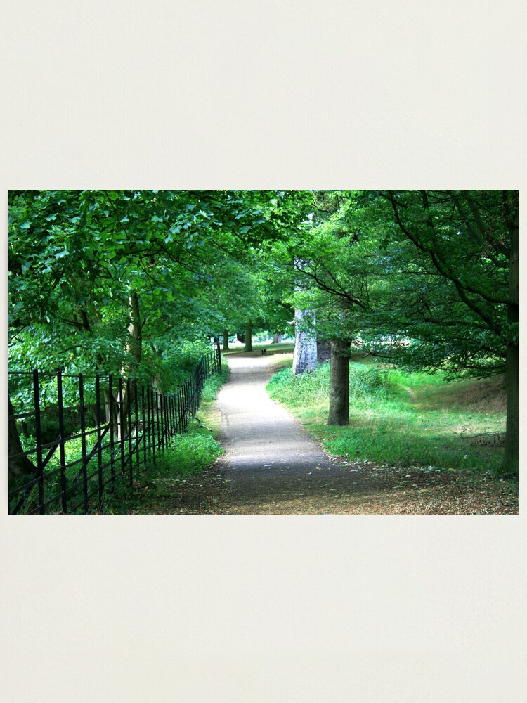Alternate view of A Path Through The Green Photographic Print