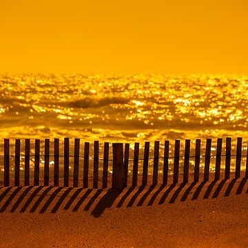 Beach Fence at sunset by Femaleform