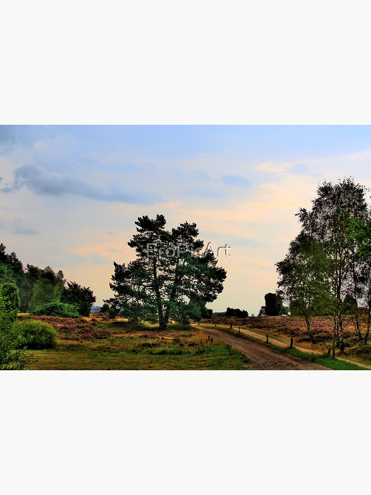 Heideweg by EroPicArt