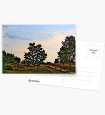 Heideweg Postcards