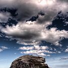 Bass Rock by Mark Dickson