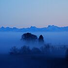 The Swiss Alps and the foggy Black Forest by Imi Koetz
