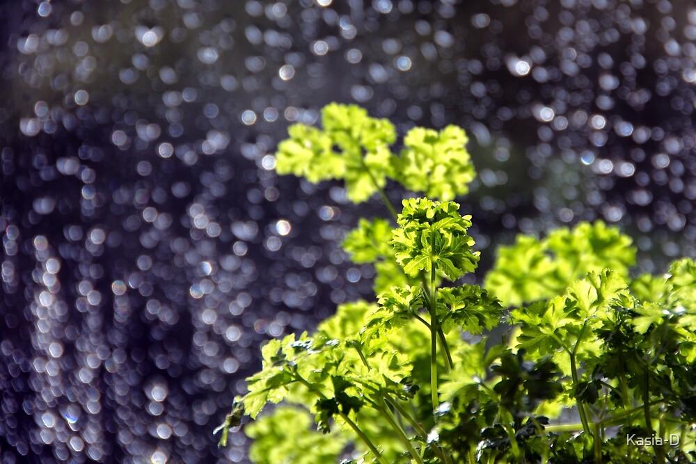 Sunshine Through the Rain by Kasia-D