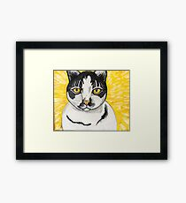 Black and White Cat with Yellow Background Framed Print