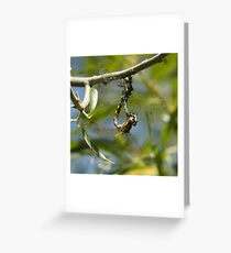 Two Common Green Darners Greeting Card