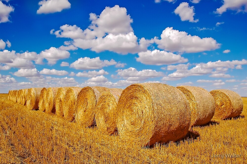 Golden Hay Bales by Jerry Walter