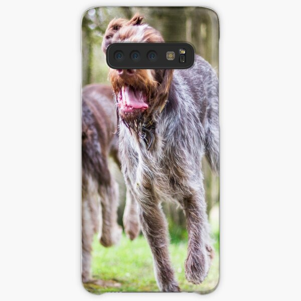 Italian Spinone Dogs Luca and Nico Samsung Galaxy Snap Case