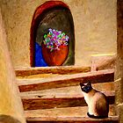 Stair Cat by Wib Dawson