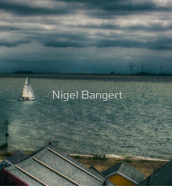 Full Sail by Nigel Bangert