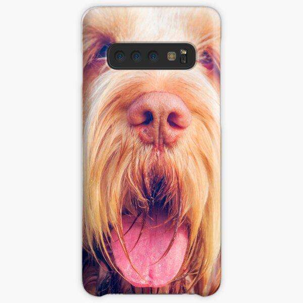 Orange and White Italian Spinone Dog Head Shot Samsung Galaxy Snap Case